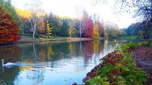 بالصور صور جمال الطبيعة , جمال وقدرة الخالق فى الطبيعة 3833 1