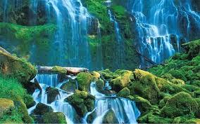 بالصور صور جمال الطبيعة , جمال وقدرة الخالق فى الطبيعة 3833 11