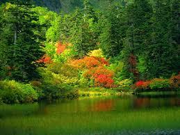 بالصور صور جمال الطبيعة , جمال وقدرة الخالق فى الطبيعة 3833 9
