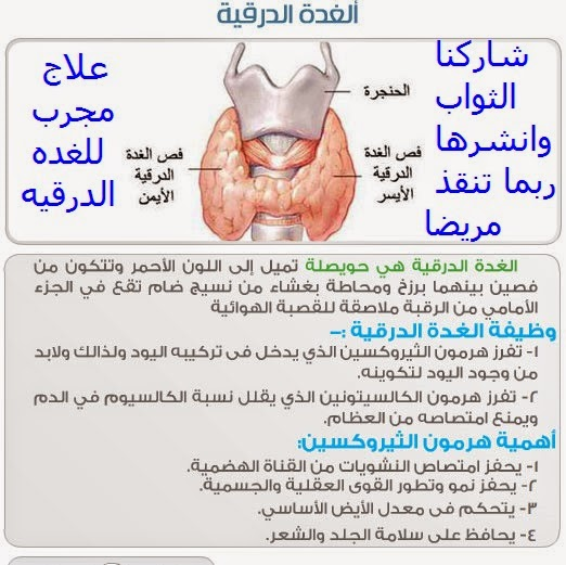 صورة اعراض قصور الغدة الدرقية , مرض الغده الدرقيه ونبذه عنه