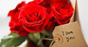 صور زهور الحب , ارق ورود الحب والربيع