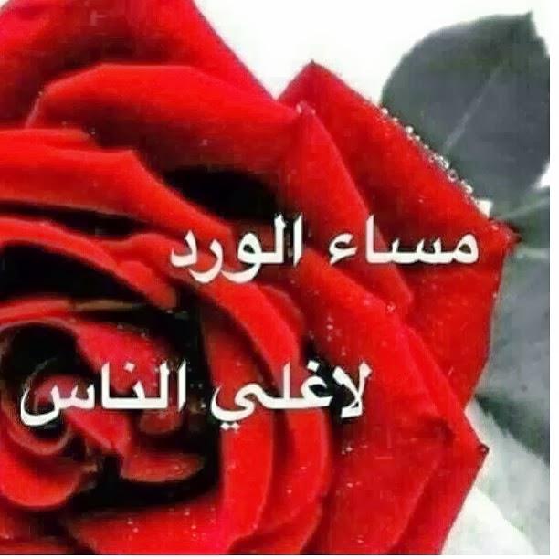 صورة بطاقات مساء الورد , صور لاجمل الكلمات المسائيه على بطاقات معايدة