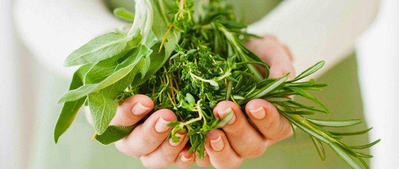 صورة علاج الصدفية بالاعشاب , العلاج بالاعشاب