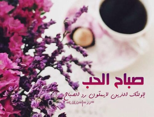 بالصور صباح الخير للحبيب , اجمل كلمات الصباح للحبيب 4970 9