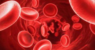 صورة علاج فقر الدم , علاج مرض فقر الدم