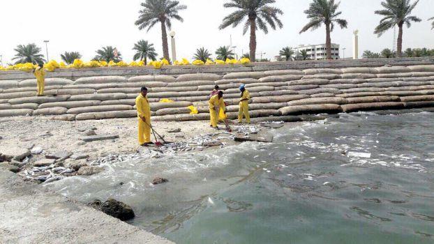بالصور اسباب تلوث الماء , كيفيه فساد المياه وتلوثها 4986 1