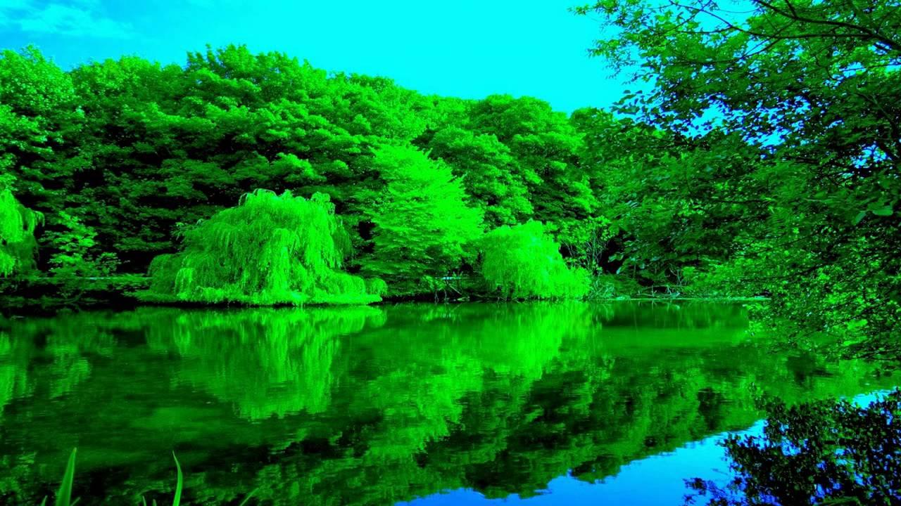 بالصور صور طبيعة خلابة , صور لجمال الطبيعه 5161 3