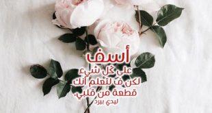 صوره رسالة اعتذار للحبيب الزعلان , كلمات اعتذار للمتخاصمين