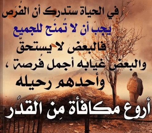 بالصور حكم اليوم , اجمل الاقوال و اجدد الحكم 5269