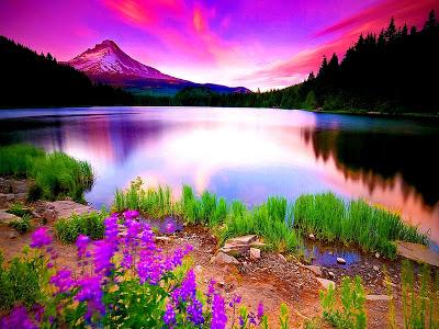 صورة صور عن الطبيعة , اجمل صورة للطبيعة