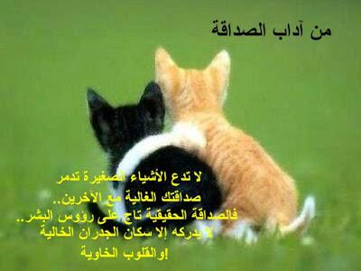 بالصور كلمات معبرة عن الصداقة , كلام معبر عن الصداقة 5926 4