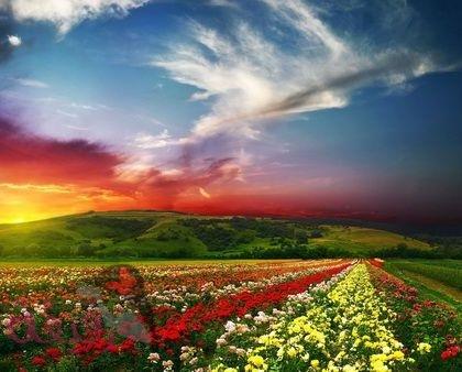 بالصور اجمل صور العالم , صور حلوة جدا فى العالم 5940 6