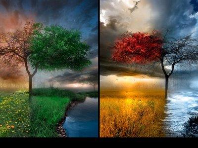 بالصور احلى صور بالعالم , احلى صورة فى العالم 5946 4