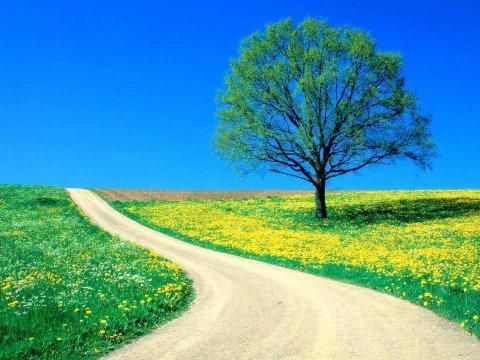 بالصور اجمل صور الطبيعة , صور جميلة جدا للطبيعة 5961 2
