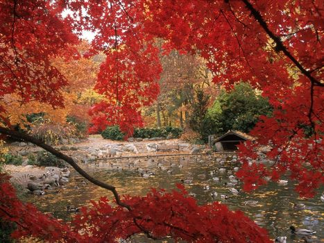 بالصور اجمل صور الطبيعة , صور جميلة جدا للطبيعة 5961 9