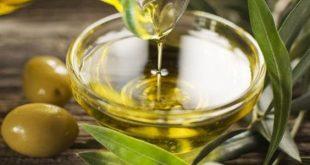 بالصور فوائد زيت الزيتون للبشره , فوائد عديده لزيت الزيتون بالفيديو 6686 2 310x165
