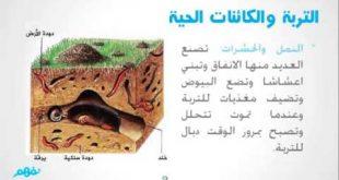 بالصور مكونات التربة , اهم مكونات التربة 1455 3 310x165