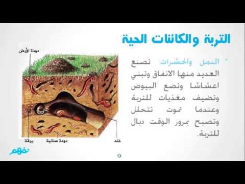 صور مكونات التربة , اهم مكونات التربة