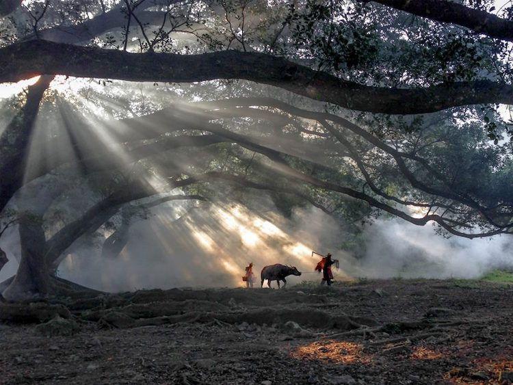 بالصور احسن صور في العالم , اجمل الصور الملتقطة 1699 6