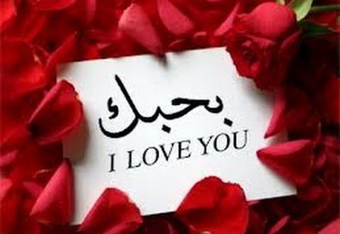 بالصور اجمل رسالة حب , ارق رسائل الحب 1741 11