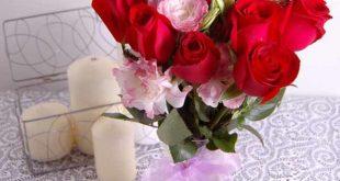 بالصور ورود رومانسية , صور زهور جميلة 1742 10 310x165