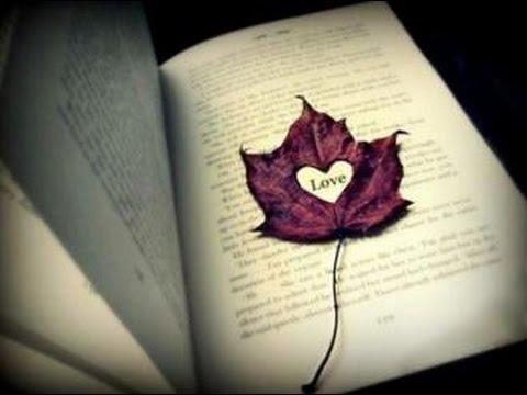 بالصور حكم واقوال عن الحب , احلى ما قيل عن مشاعر الحب 2274 6