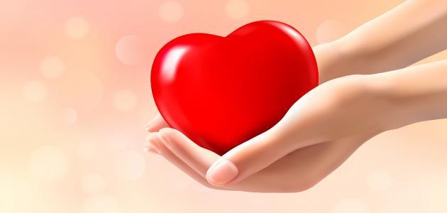 بالصور حكم واقوال عن الحب , احلى ما قيل عن مشاعر الحب 2274 8