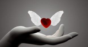 اجمل ماقيل في الحب , الحب و احلى كلام عليه