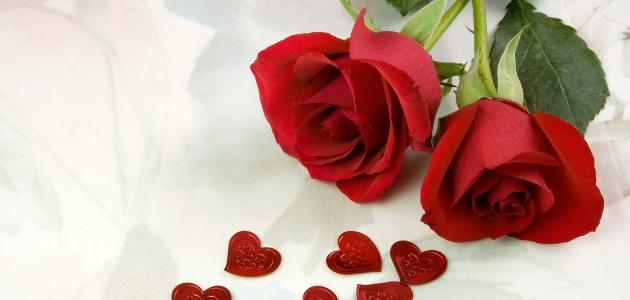 صور عبارات جميلة عن الحب , اجمل عبارات عن الحب