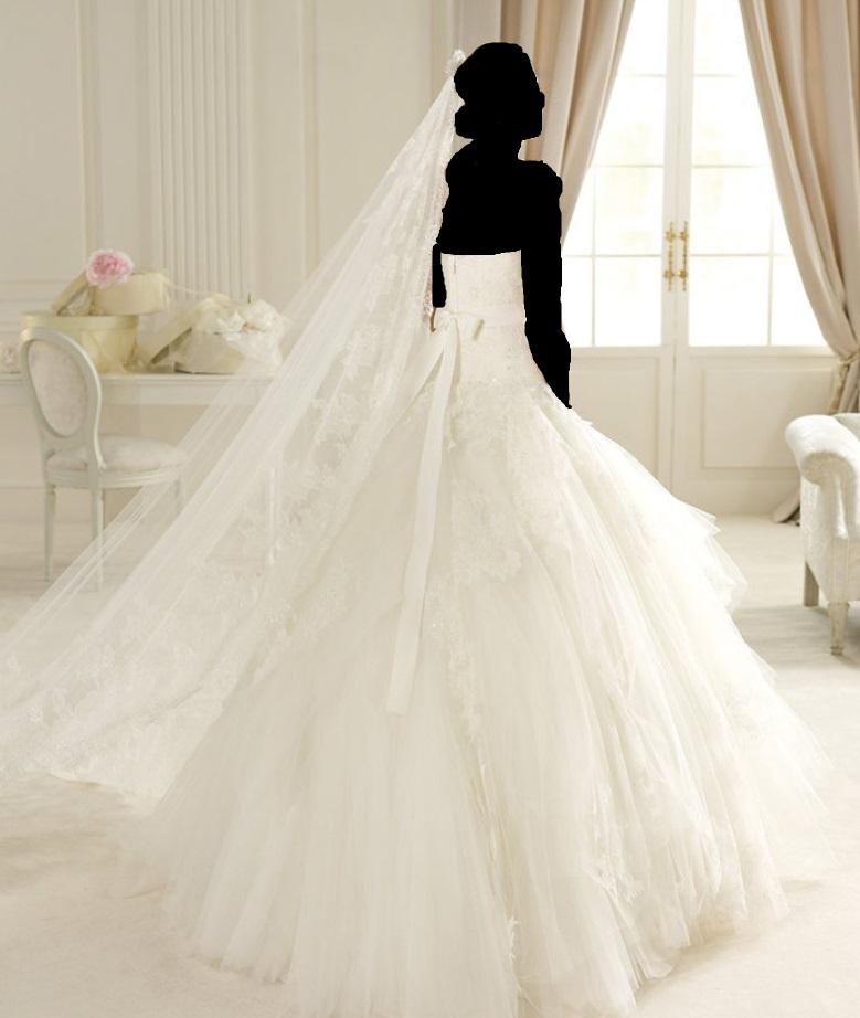 بالصور صور عروس , احلى صور عروس 2648 12