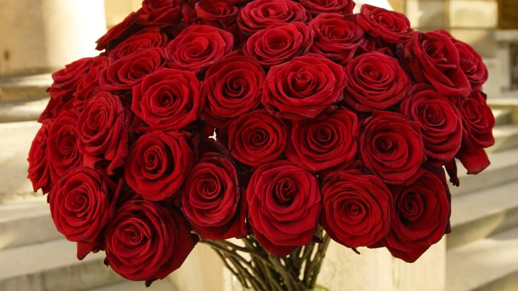 صوره اجمل بوكيه ورد , احلى صور بوكيه الورد