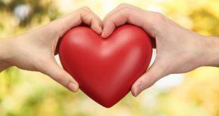 بالصور اجمل صور حب رومانسيه , شاهد صور للحب و الرومانسيه 2733 9 310x165