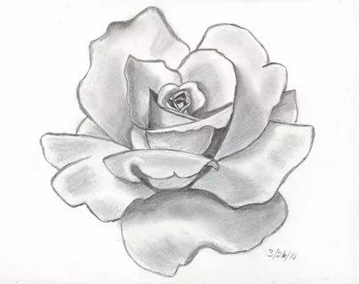 بالصور رسومات جميله , اجمل اشكال الرسومات الطبيعية 2913 3