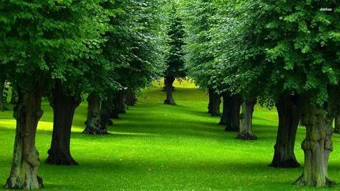 صور صور طبيعية , اجمل المناظر الطبيعية الرائعة