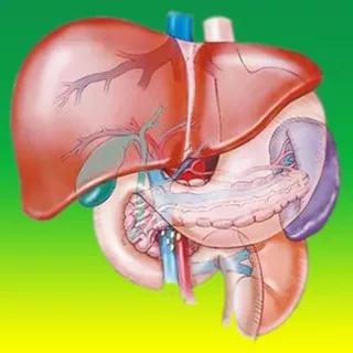 بالصور علاج تليف الكبد , العلاج الطبى الصحيح لتليف الكبد 3059