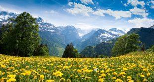 بالصور جمال الطبيعة , صور طبيعيه خلابه 3221 12 310x165