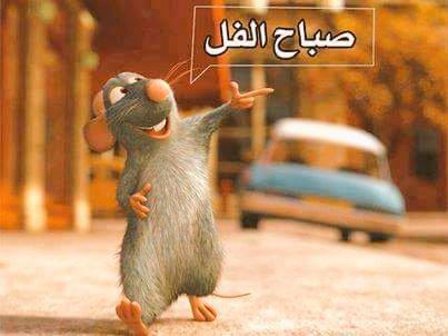 بالصور صباح الخير مضحكة , صباح الخير بابتسامه 3422 5