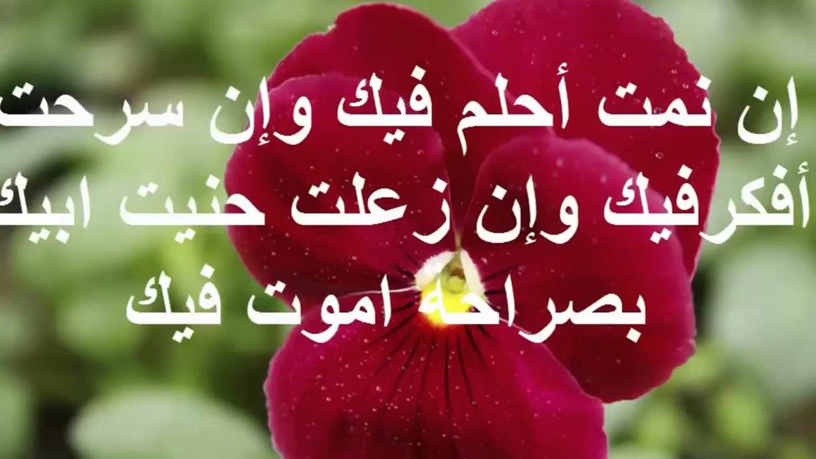 بالصور رسائل حب خاصة للحبيب , مسجات حب للحبيب 3942 1