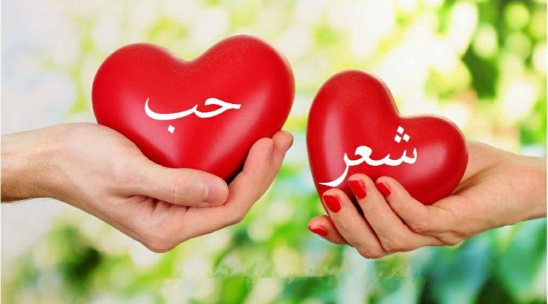 بالصور كلام جميل في الحب , الحب واجمل كلام عنه 3947 11