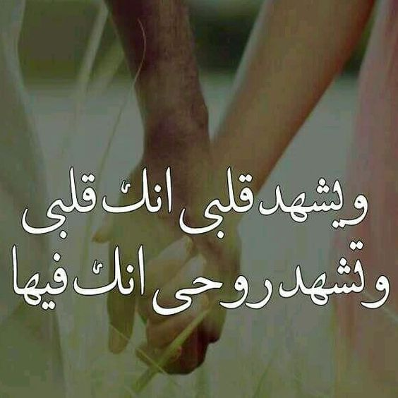 بالصور كلام جميل في الحب , الحب واجمل كلام عنه 3947 2