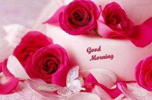 صورة صور صباح الخير رومانسيه , صور رائعه لالقاء تحيه الصباح للاحباب