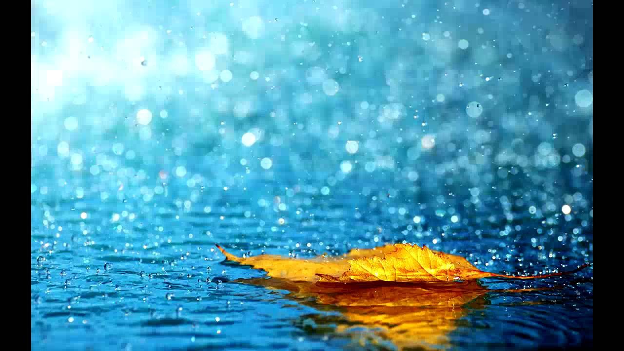بالصور خلفيات مطر , خلفيات لتساقط المطر 3962 7