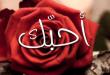 بالصور كلمة احبك , اعظم كلمه فالوجود الحب 4013 1 110x75