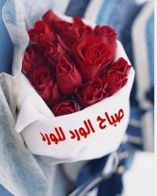 بالصور صباح الورد حبيبي , اجمل صباح الفل والياسمين 4025 10