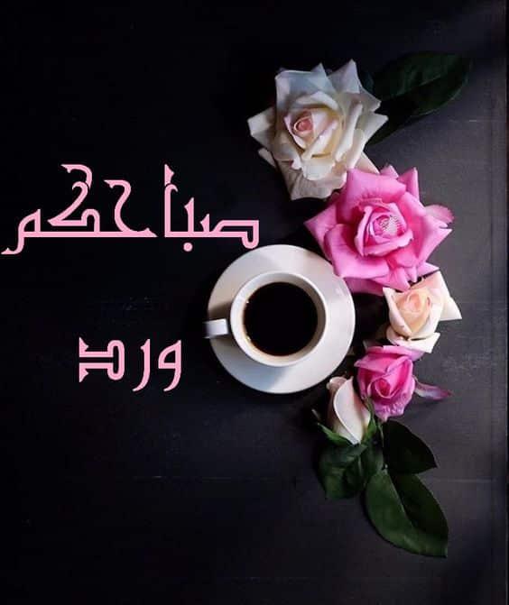 بالصور صباح الورد حبيبي , اجمل صباح الفل والياسمين 4025 3