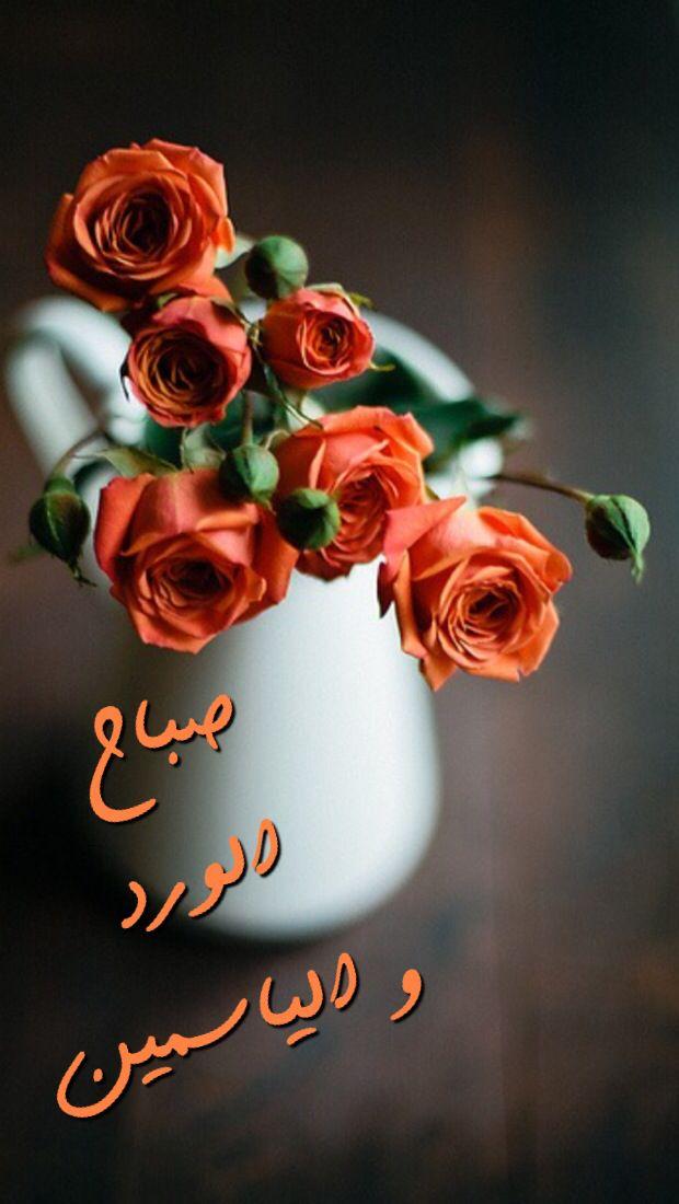 بالصور صباح الورد حبيبي , اجمل صباح الفل والياسمين 4025 7
