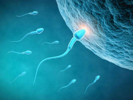 صور عند تلقيح البويضة ماذا تشعر المراة , اعراض حدوث الحمل عند تلقيح البويضه