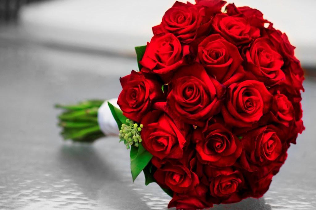 صورة اجمل ورود في العالم , الورد وجمال الطبيعة