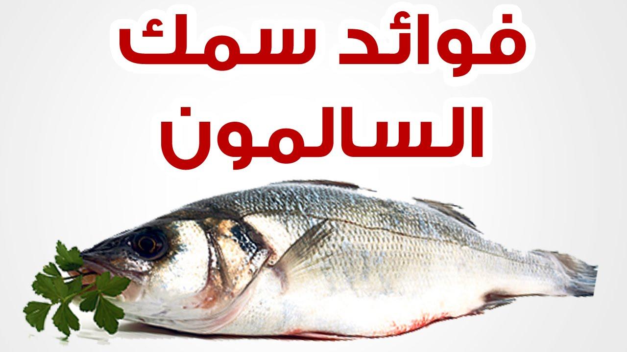 بالصور فوائد السمك , الاستفاده من تناول الاسماك 4166 2