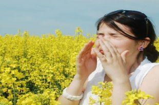 صور حساسية الربيع , اسباب حساسيه الربيع طرق علاجها